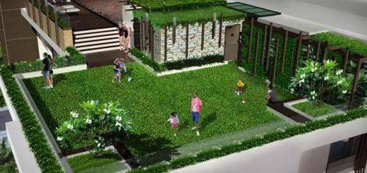 roof-garden-12-5-2011