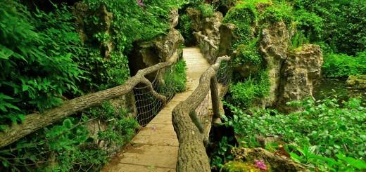 albert-kahn-japanese-gardens