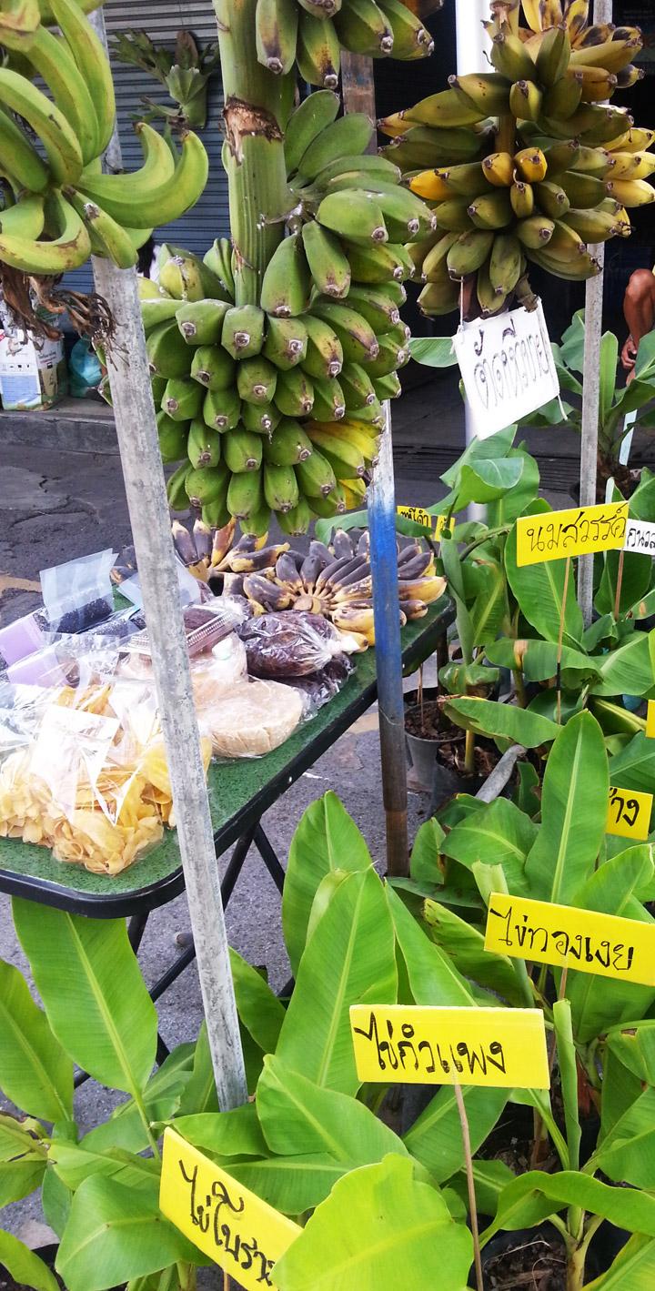 banana-man-04