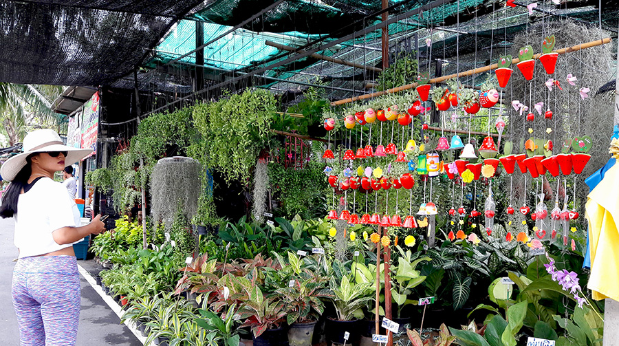 ตลาดต้นไม้ริมถนนเลียบทางด่วนเอกมัย-รามอินทรา-0004